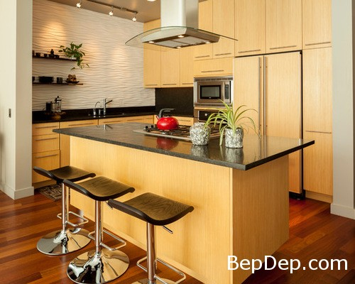 a1e122b303657010_6759-w500-h400-b0-p0--contemporary-kitchen